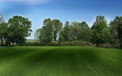 Hydroseeding grassmaster for Drought resistant grass crossword clue